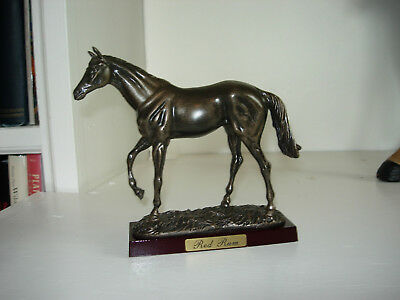 Red Rum- Champion Thoroughbred Race Horse, United Kingdom- Beautiful Model