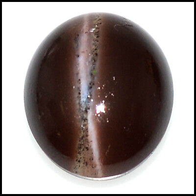15.52Cts NATURAL SCAPOLITE CAT'S EYE OVAL CABOCHON GEMSTONES 109-09