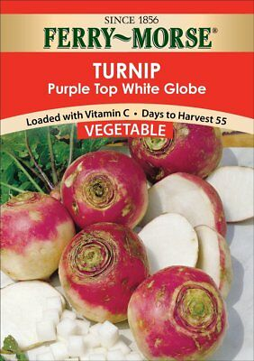 Ferry Morse Seven Top Turnip Seed Packet
