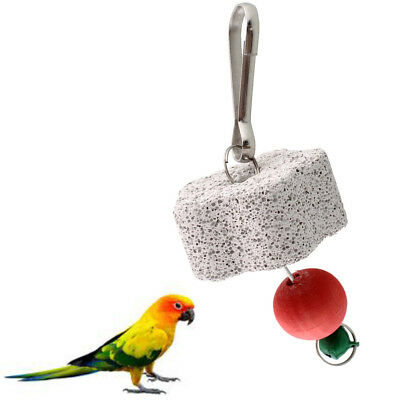 Bird Squirel Cage Chew Bite Scratcher Bell Toy Teeth Grinding Parakeet Budgie