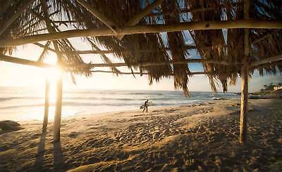 WALL MURAL PHOTO WALLPAPER XXL Beach Seaside Surfer Thatched Cover Sand (JD-1214