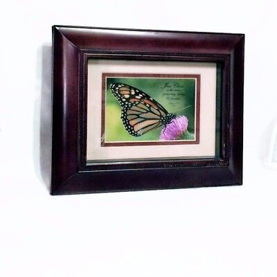 Religious Framed Wall Art Butterfly Photo with Scripture Hebrew 13:8 Longaberger