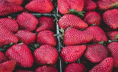 WALL MURAL PHOTO WALLPAPER XXL Strawberry Strawberries Fruit Market (JD-1257WS)