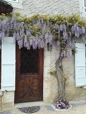 French property,