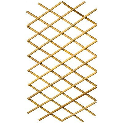 Nature Garden Trellis Expanding Fence Panel Wall Decor 100x200 cm Bamboo 6040722
