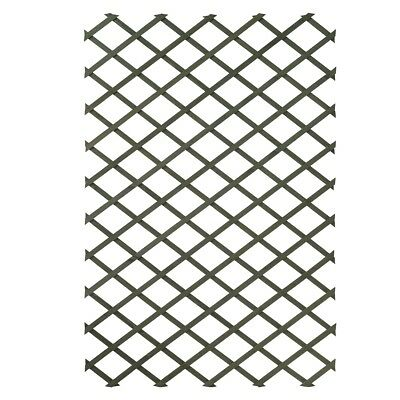 Nature Garden Trellis Expanding Fence Panel Decor 100x200 cm Wood Green 6041704