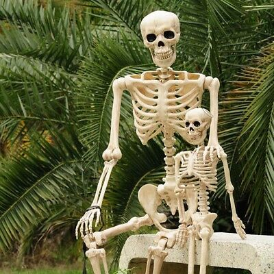 Halloween 3/5ft giant life size poseable skeleton Perfect decoration for parties