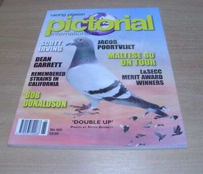 Racing Pigeon Pictorial International magazine #565 2017 Scott Irving, Donaldson