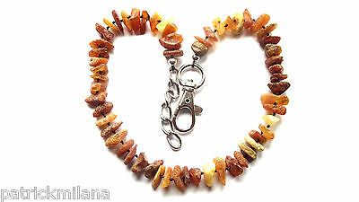 Baltic Amber collar for cat or dog - natural tick and flea repellent