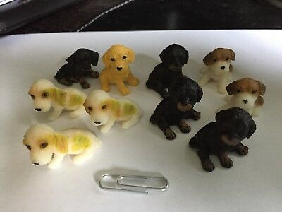 Miniature Dogs Plastic Lot of 10