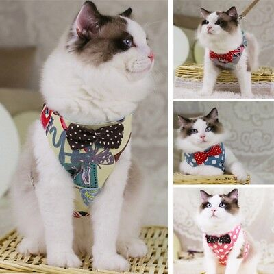 Newest Cat Harness Pet Kitty Ventilate Walking Lead Collar Comfort Vest Strap
