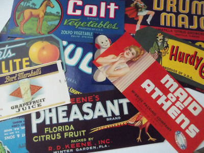 50 Different Vintage Florida Crate Labels