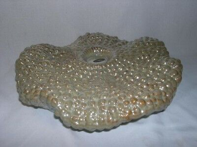 Sanibel Home  Coral Reef  Cluster  Large  Candle Holder / Home Decor