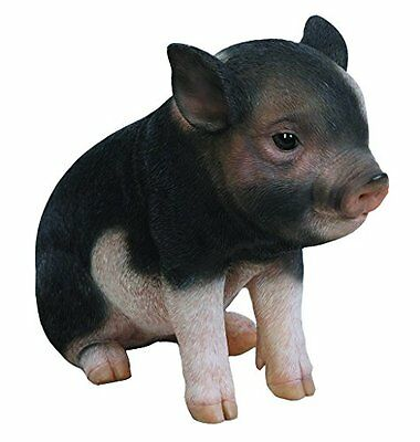 Pig Sitting Baby Piglet Dark Brown Realistic Figurine Statue Home Garden Decor