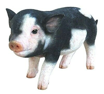 Pig Life Like Baby Piglet Dark Brown Home Garden Decor Figurine Free Ship