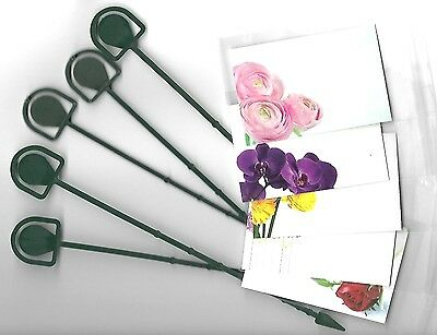 5 Pack Florist Mixed Floral Blank Message Cards & Cardettes (Picks) & Cello Bags