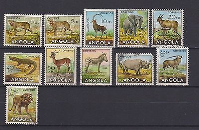 Angola, Animals, Lot