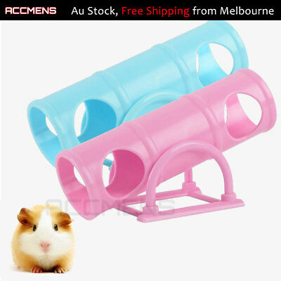 Small Animal Toy Seesaw Tunnel Hamster Guinea Pig Forret Squirrel Mouse Mice Fun