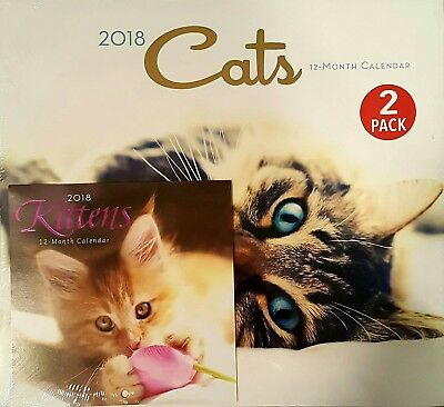 FREE SHIP 2-PACK Cute Adorable Kittens Cat Pets 12-Month 2018 Calendar 12x11 New