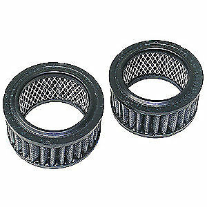 NEWSTRIPE Replacement Individual Carbon Filter,PK2, 10001860