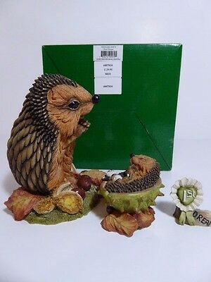 Country Artists Hedgies Ornament First Dream Ref 90979 Boxed