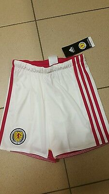 Scotland football shorts