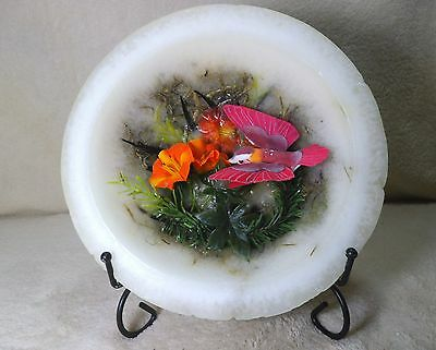 hummingbird Habersham candle Co. wax bowl - stunning beautiful