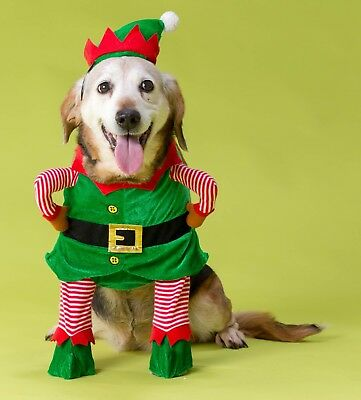 Elf Christmas Helper Suit / Costume - for puppys or dogs