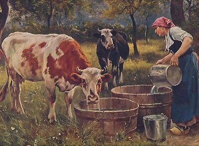 Hunts Perfect Baking Powder Minneapolis MN Give Away Advertising Art Print Cows