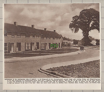 (3738) Harlow Essex Chippingfield Area Development  - 1950 Clip