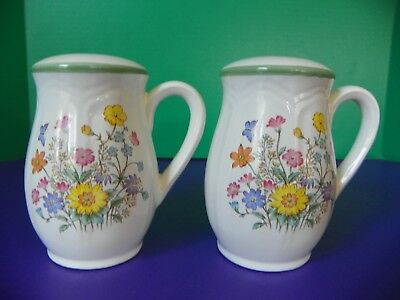 Large Salt and Pepper Shakers Flower Design Japan