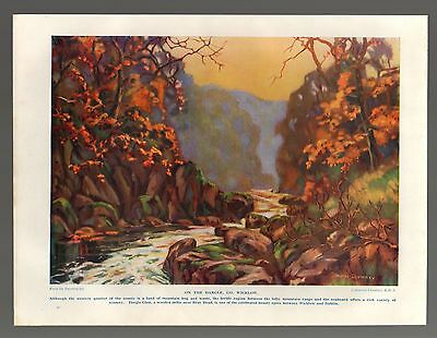 (5873)  On The Dargle Co Wicklow  Catherine Chamney   c.1930s Print