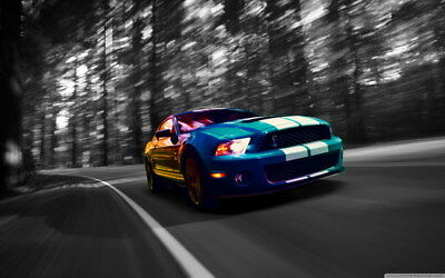 """049 Mustang - Ford Shelby GT500  Classic Racing Car concept 38""""x24"""" Poster"""