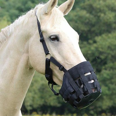 Shires Comfort Grazing Muzzle Grass - Padded Adjustable - Horse Pony (495N)