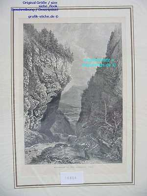 16404-Schweiz-Switzerland-GASTEREN THAL-TH-1880