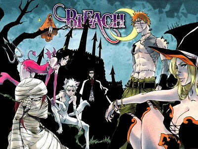 "005 Bleach - Dead Rukia Ichigo Fight Japan Anime 32""x24"" Poster"