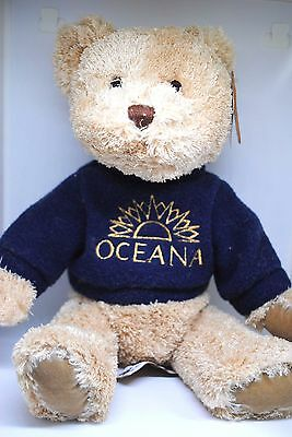 Special Exclusive Posh Paws TEDDY BEAR Collection in OCENA Cruise Sweater