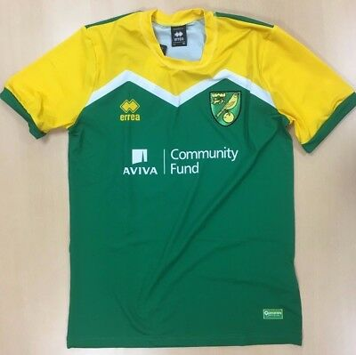 Official Norwich City Fc Player Issued Training T-Shirt