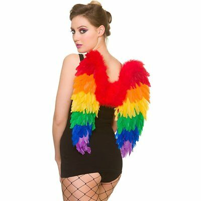 Adult Large Rainbow Feather Angel Wings Gay Pride/Carnival Fancy Dress Accessory