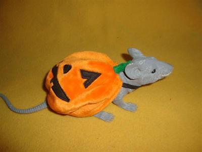 Jack o' Lantern  Halloween Costume for Baby Rat from Petrats