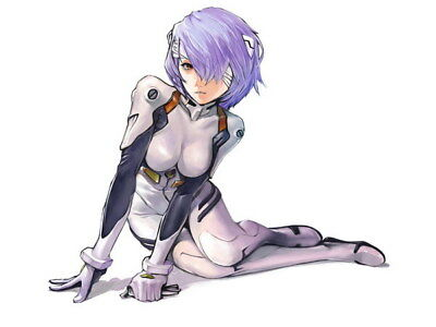 "088 Neon - Genesis Evangelion Ayanami Rei Fighting Anime 18""x14"" Poster"