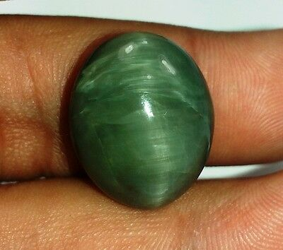 22.75 CT Cats Eye 100% Natural 19x15x10mm Awesome Quality Gemstone 959