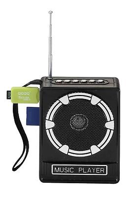 Amplificatore Radio Portatile Lettore Stereo Mp3 Fm Sd Card Usb
