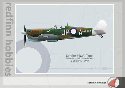 Warhead Illustrated Spitfire Mk.Vc Trop. RAAF No.79 Sq Jen III Aircraft Print