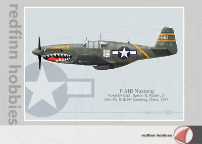 Warhead Illustrated P-51B Mustang 26th FS, Jeanne III Aircraft Print