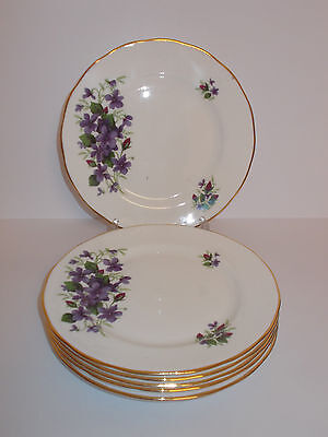 6 x Queen Anne Bone China Side Cake Plates Purple Floral Design Lovely