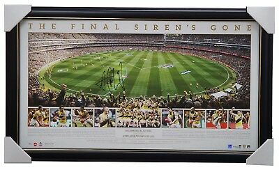 Richmond 2017 Premiers Official AFL MCG Panoramic Signed Print Framed - COTCHIN