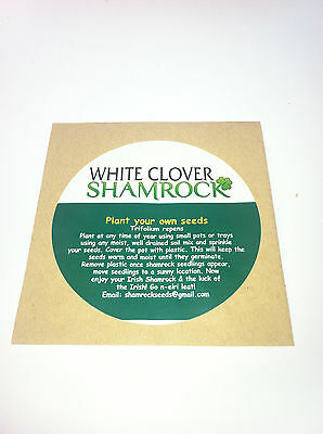 White Clover Shamrock seeds with free complimentary irish blessing bookmark .