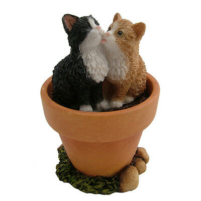 Two Kittens Licking Fiesta Studio Collections Bnib Cute Cat, Kitten, Kitty