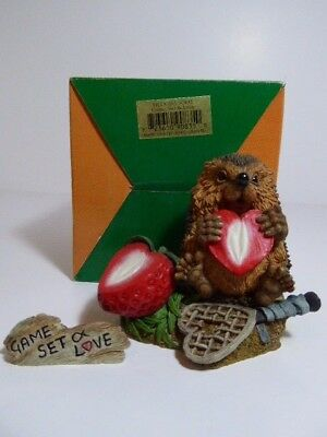 Country Artists Hedgies Figure Game Set & Love & Name Plaque Ref 90835 Boxed